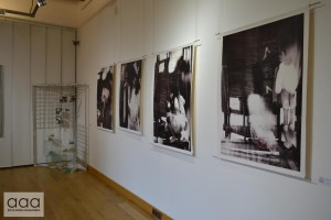 25aaa_exhibition_14