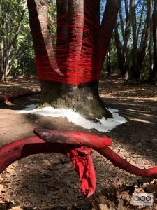 installation @ Forest Resonance Fest, Plovdiv 2019